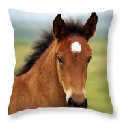 Cute Foal Throw Pillow