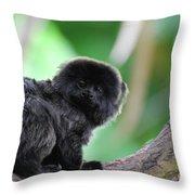 Cute Goeldi's Marmoset Sitting In A Tree Throw Pillow
