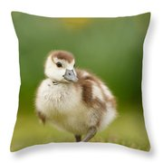 Cute Gosling Throw Pillow