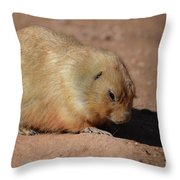 Cute Ground Squirrel Burrowing In The Dirt Throw Pillow