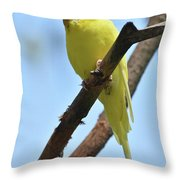 Cute Little Parakeet Resting On A Branch Throw Pillow