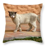 Cute Mexican Kitty Throw Pillow
