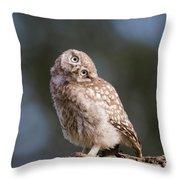 Cute, Moi? - Baby Little Owl Throw Pillow