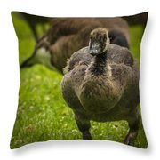 Cute On The Move Throw Pillow