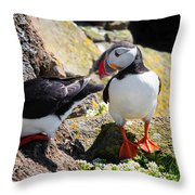 Cute Puffin Couple In Iceland Latrabjarg Throw Pillow
