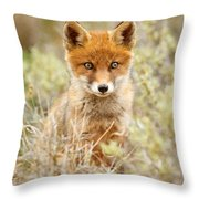 Cute Red Fox Kit Throw Pillow