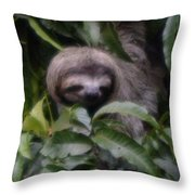 Cute Sloth Face Throw Pillow