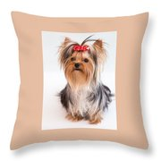 Cute Yorkie Puppy With Red Bow Throw Pillow