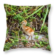 Cutie-beauty Throw Pillow