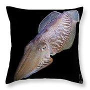 Cuttlefish At Night Throw Pillow