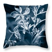 Cyanotype Morn Throw Pillow