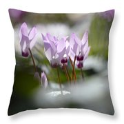 Cyclamen At Lachish 1 Throw Pillow