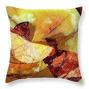 Cycle Of Life Squared  Throw Pillow