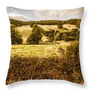 Cygnet Rustic Farming Fields Throw Pillow