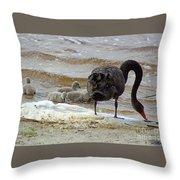 Cygnus Atratus Iv Throw Pillow