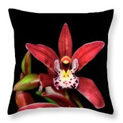 Cymbidium Orchid 001 Throw Pillow