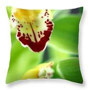 Cymbidium Seafoam Emerald Orchid Throw Pillow by Kathy Yates