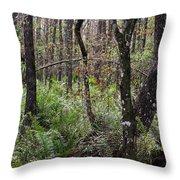 Cypress Arch Throw Pillow