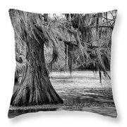 Cypress At Caddo Lake Throw Pillow by Mary Lee Dereske