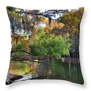 Cypress Bend Throw Pillow