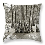 Cypress Evening Throw Pillow