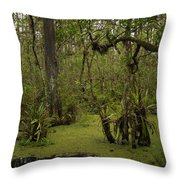 Cypress Forest Throw Pillow
