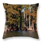 Cypress Grove Five Throw Pillow