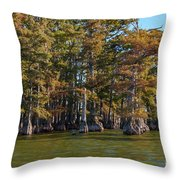 Cypress Grove Four Throw Pillow