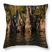 Cypress Grove Two Throw Pillow
