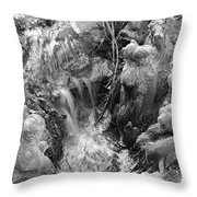 Cypress Knees II Throw Pillow