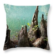Cypress Knees In The Mist Throw Pillow