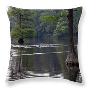 Cypress Lake Throw Pillow