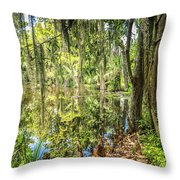 Cypress Pond Delight Throw Pillow
