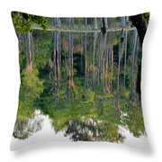 Cypress Pond Throw Pillow