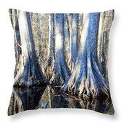 Cypress Reflection Throw Pillow