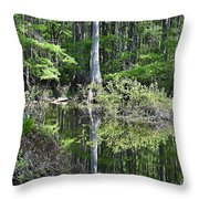 Cypress Slough Throw Pillow