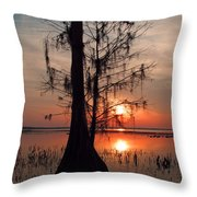 Cypress Sunset Throw Pillow