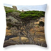 Cypress Tree In Point Lobos State Reserve Near Monterey-california  Throw Pillow