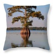 Cypress Tree On Reelfoot Lake Throw Pillow