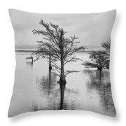 Cypress Trees In Lake Mattamuskeet North Carolina Throw Pillow