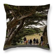 Cypress Tunnel Throw Pillow