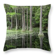 Cypresses In Tallahassee Throw Pillow