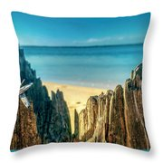 Cyprus Of The Sea Throw Pillow