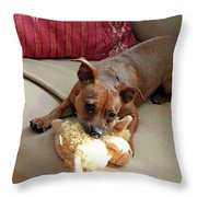 Cyrus The Great Throw Pillow