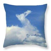 D09148-dc Cloud Camel Throw Pillow