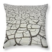 D17845-dried Mud Patterns  Throw Pillow