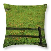 D7b6306 Fence And Poppies Throw Pillow