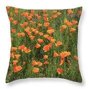 d7b6307 California Poppies Throw Pillow