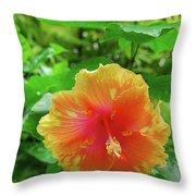 D9m-23 Orange Flower Throw Pillow