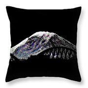 Da Mountain And Stadia Throw Pillow